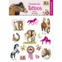 Tatuaże wodne Koń mój przyjaciel Spiegelburg